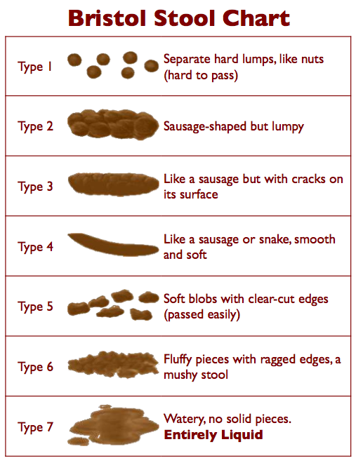 Classifying Crap: The Bristol Stool Scale