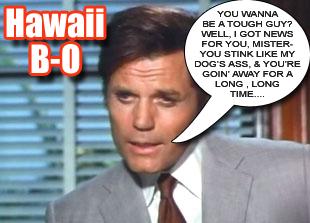Hawaii B-O